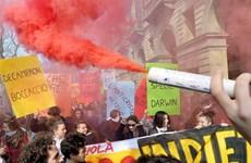 Italy: Học sinh sinh viên biểu tình chống cải cách giáo dục
