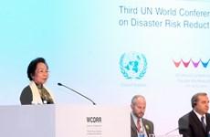 Phó Chủ tịch nước phát biểu tại hội nghị về giảm thiểu rủi ro