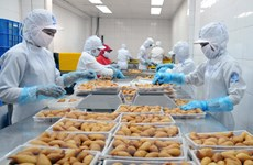 TP Hồ Chí Minh: Xuất khẩu ước đạt 6,24 tỷ USD trong quý 1