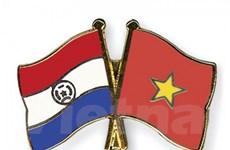 Hai Bộ Ngoại giao Việt Nam và Paraguay tham khảo chính trị