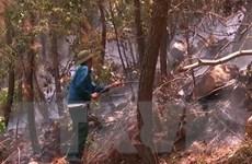 Rừng phòng hộ tại 3 xã ở tỉnh Thanh Hóa lại tiếp tục cháy