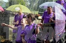 Nhiều hoạt động thu hút du khách đến Đà Lạt đợt cao điểm Hè