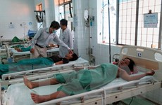 Kon Tum: Ăn phải nấm độc, 5 người trong tình trạng nguy kịch