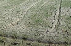 Khí biển mang theo hơi mát làm dịu nắng nóng ở Bắc Bộ