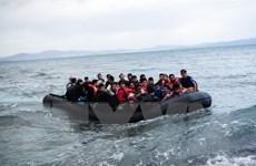 EU sẵn sàng thảo luận về kế hoạch tiếp nhận người di cư