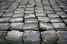 Ecuador tịch thu 7,3 tấn cocaine trong bột cá ở cảng Guayaquil