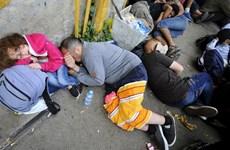 Bulgaria điều quân tới biên giới để chặn dòng người di cư
