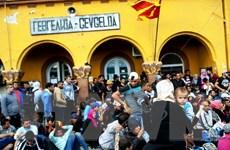 """Macedonia mở cửa biên giới cho người di cư """"dễ bị tổn thương"""""""
