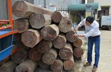 Nhà nguyên phó bí thư huyện ủy Ea Kar chứa hơn 5,5m3 gỗ lậu