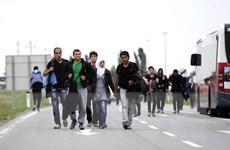 Lãnh đạo Đức, Áo và Thụy Điển kêu gọi châu Âu đoàn kết