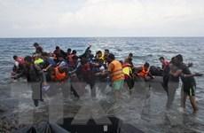 EU khởi động chương trình tái bố trí 40.000 người tị nạn