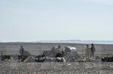 Máy bay Nga rơi ở Ai Cập: Phát hiện thêm 12 mảnh vỡ máy bay