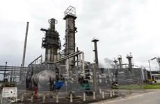 Giá dầu thấp buộc các nước vùng Vịnh giảm chi tiêu quốc phòng