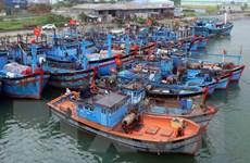 Ngư dân ven biển Tây Nam Bộ vẫn thờ ơ với bảo hiểm tàu cá