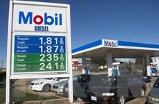 Giá dầu lao dốc đe dọa thị trường việc làm và đầu tư dầu mỏ