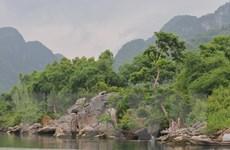 Phong Nha-Kẻ Bàng có 14 loài sinh vật ngoại lai có nguy cơ xâm hại