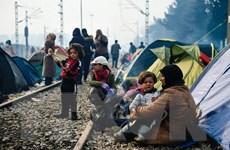 Macedonia đóng cửa biên giới với người di cư trái phép