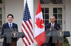 """""""Tuần trăng mật"""" mới trong phát triển quan hệ Canada và Mỹ"""