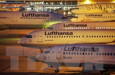 Lợi nhuận ròng của Lufthansa tăng cực mạnh trong năm 2015
