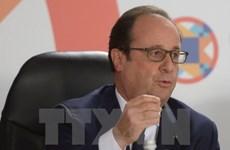 Ông Hollande có ít cơ hội tại bầu cử Tổng thống Pháp năm 2017