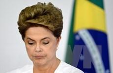 Tổng thống Brazil Rousseff bác bỏ mọi cáo buộc của phe đối lập