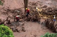 Brazil yêu cầu bồi thường hàng chục tỷ USD vì vụ vỡ đập mỏ quặng