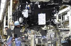 Hãng Toyota nối lại sản xuất tại tất cả cơ sở lắp ráp trong nước