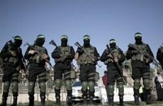 Tướng Israel cáo buộc Hamas và IS cộng tác với nhau