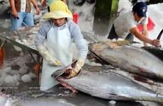 Phú Yên hội tụ nhiều tiềm năng về kinh tế biển và du lịch