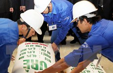 Sẽ thanh tra Nhà máy đạm Ninh Bình trong tháng Sáu này