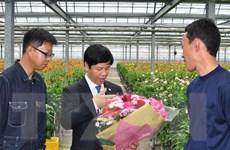 Tỉnh Oita muốn tăng cường hợp tác với các địa phương Việt Nam