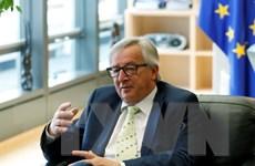 Vấn đề Brexit: Các nhà lãnh đạo châu Âu chia rẽ tương lai của EU
