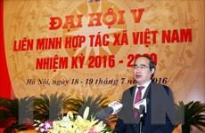 Phát huy vai trò nòng cốt để khu vực kinh tế hợp tác phát triển