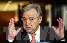 Hội đồng Bảo an bỏ phiếu kín lần hai về các ứng viên TTK LHQ