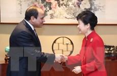 Tổng thống Hàn Quốc Park kêu gọi tăng cường hợp tác với Ai Cập