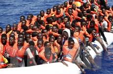 Xảy ra nhiều ẩu đả tại các trại tị nạn trên đảo Chios của Hy Lạp