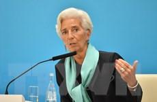 IMF: Xung đột xóa sổ thành tựu phát triển một thế hệ ở Trung Đông
