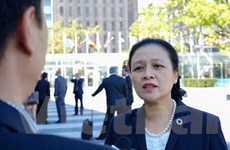 Việt Nam mong LHQ đề cao tôn trọng và tuân thủ luật pháp quốc tế