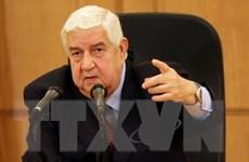 """Syria: Vụ không kích của liên quân do Mỹ cầm đầu là """"cố ý"""""""