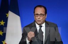 Tổng thống Pháp đang cân nhắc lại cuộc gặp với người đồng cấp Nga