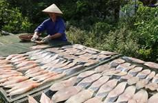 Hải Phòng: Vị ngon riêng biệt của cá thu một nắng Đồ Sơn