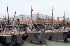 Hàn Quốc sẽ dùng vũ lực với tàu cá Trung Quốc vi phạm lãnh hải