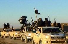 Chống khủng bố: Iran đập tan âm mưu đánh bom của IS