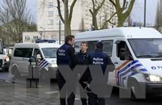 Bỉ truy quét phần tử liên quan đến thủ phạm tấn công ở Brussels