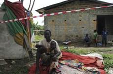 Hơn một nửa dân số ở Sierra Leone thiếu lương thực nghiêm trọng