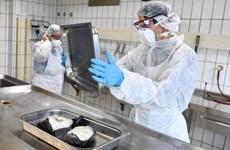 Đức, Thụy Sĩ ghi nhận sự bùng phát mới của virus cúm gia cầm H5N8