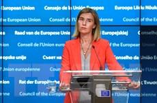 EU không có ý định trừng phạt Nga liên quan đến xung đột Syria