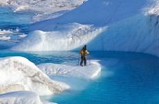Nhiệt độ ấm lên khiến môi trường Bắc Cực ngày càng xuống cấp
