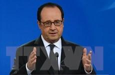 """Tổng thống Hollande: Pháp đang """"ở mức đe dọa khủng bố cao"""""""