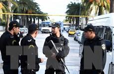 Vụ tấn công ở Berlin: Cảnh sát thẩm vấn gia đình nghi phạm ở Tunisia